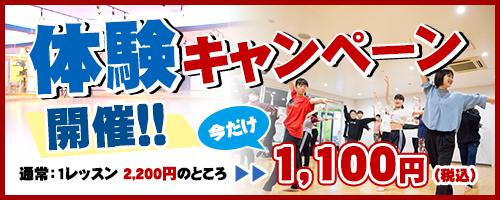 体験キャンペーン開催!!